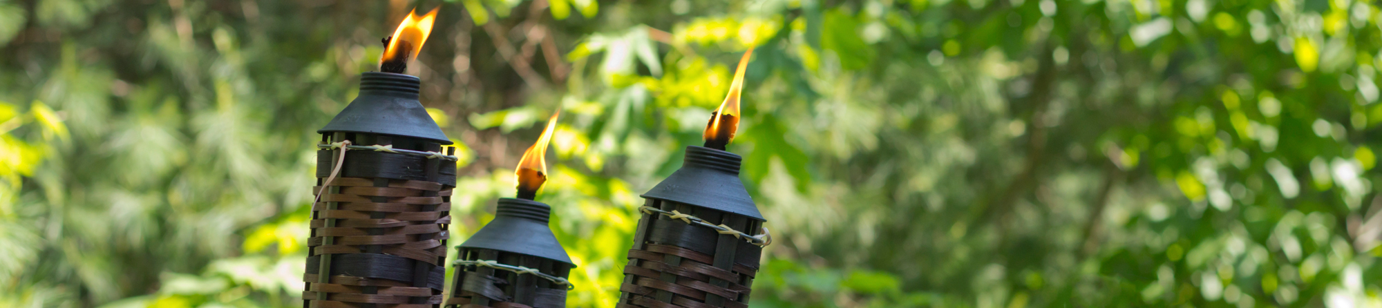 3 burning tiki torches to ward off mosquitoes