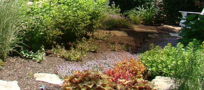 commercial plants and stone walkway