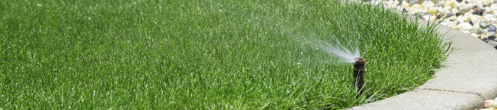 water spraying out of sprinkler onto green grass