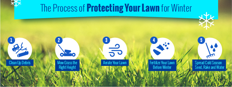 prepare your lawn for winter infographic